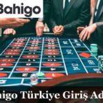 bahigo-giris